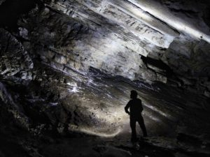 Un antro all'interno della galleria fossile
